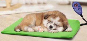 manta electrica para perros