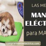 Mejor Manta Eléctrica para Mascotas